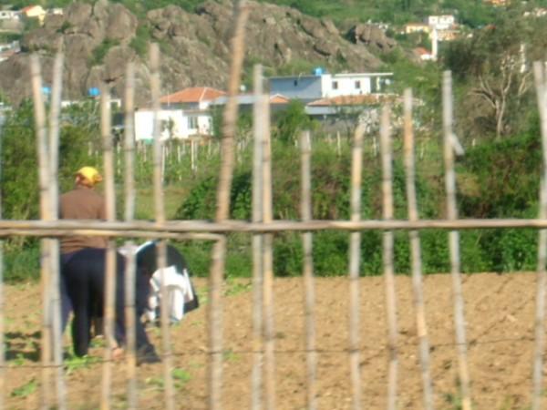 Donne al lavoro, Albania, foto di Valentina Rodofili, CB Oltre le vendette