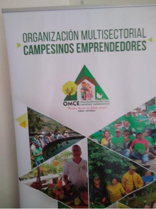 Colombia_corpi civili di pace_cooperativa caffè